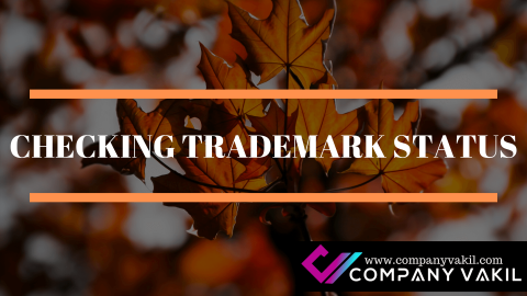 CHECKING TRADEMARK STATUS