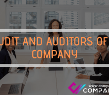 AUDIT AND AUDITORS OF A COMPANY