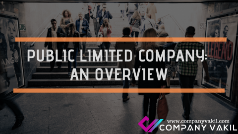 PUBLIC LIMITED COMPANY: AN OVERVIEW